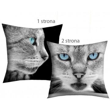 Poduszka rzymski kot