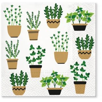 serwetki papierowe na stól  i do decoupage z motywem zioł w doniczkach